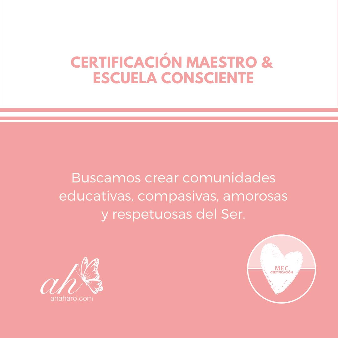 MEC-crear comunidades